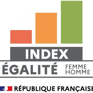 logo-index-egalite-professionnelle